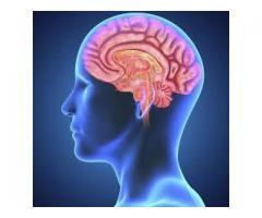 http://www.supplement4health.org/neuro-brain-booster/